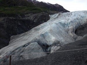 Exit Glacier today