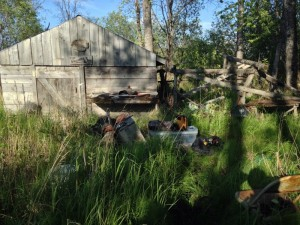 Chris, Donna, and Zohn's newly discovered and beautifully rustic fish camp