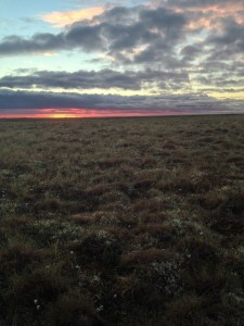 Tundra at sunset.